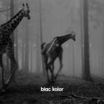 Blac Kolor |  Wide Noise |  BUP012